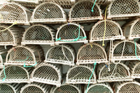 0316A_Lobster Traps