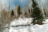 0134-Colorado Rockies