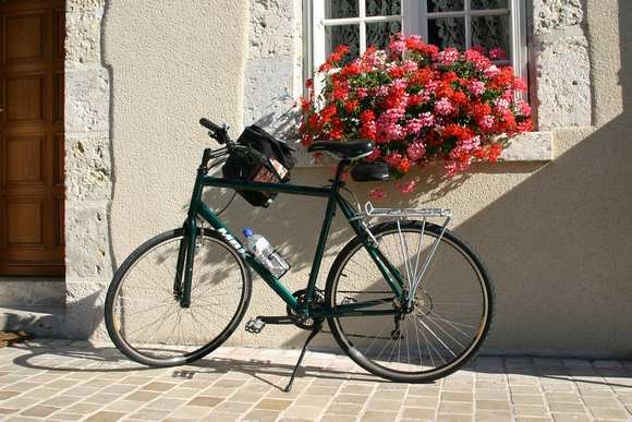 0555_Flowered Bicycle